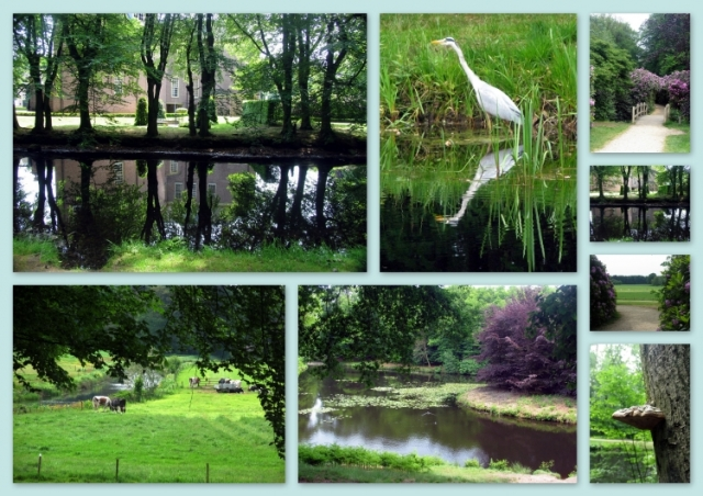 Groeneveld in de zomer 2